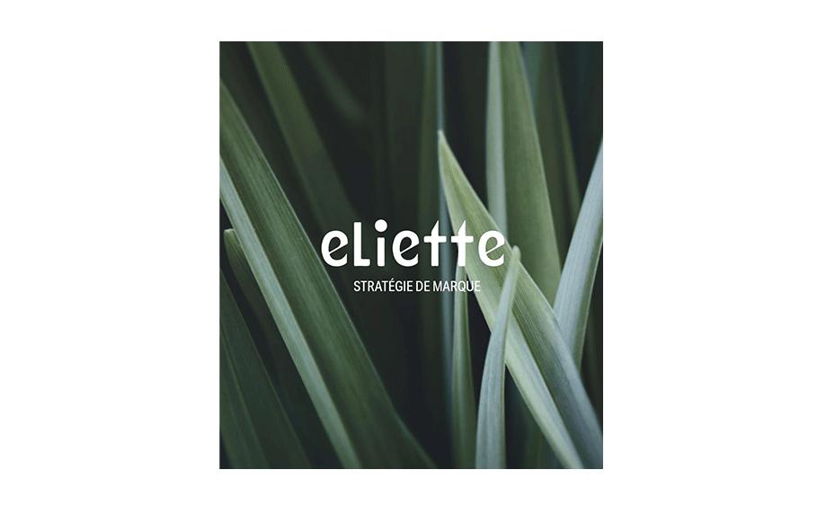Eliette, agence de communication du Groupe Sud Ouest dédiée à la stratégie de marque